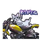 かわいいネコと原付スクーター(個別スタンプ:20)