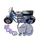 かわいいネコと原付スクーター(個別スタンプ:24)