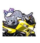 かわいいネコと原付スクーター(個別スタンプ:32)