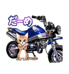 かわいいネコと原付スクーター(個別スタンプ:35)