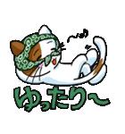 泥棒ネコ(個別スタンプ:6)