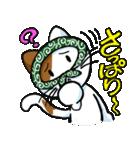 泥棒ネコ(個別スタンプ:24)