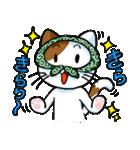 泥棒ネコ(個別スタンプ:26)