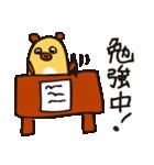 おまめぐま(個別スタンプ:37)