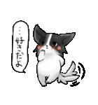 彼氏向けの犬スタンプ(個別スタンプ:03)