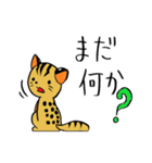 絶滅危惧種ねこ(つしまやまねこ)(個別スタンプ:15)