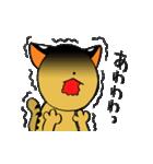 絶滅危惧種ねこ(つしまやまねこ)(個別スタンプ:35)