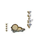 「まるちゃん」のひかえめスタンプ(個別スタンプ:24)
