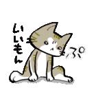 いのつく仔猫2(あ猫)(個別スタンプ:11)