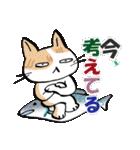 いのつく仔猫2(あ猫)(個別スタンプ:23)