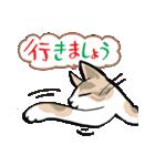 いのつく仔猫2(あ猫)(個別スタンプ:24)