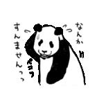 てきとーパンダ3(個別スタンプ:13)