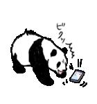 てきとーパンダ3(個別スタンプ:20)