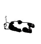 てきとーパンダ3(個別スタンプ:33)