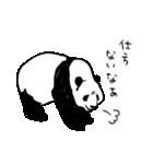 てきとーパンダ3(個別スタンプ:37)