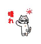 三毛猫の猫美 2(個別スタンプ:3)