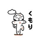 三毛猫の猫美 2(個別スタンプ:4)