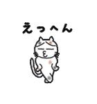 三毛猫の猫美 2(個別スタンプ:14)