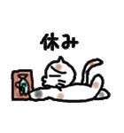 三毛猫の猫美 2(個別スタンプ:21)