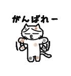三毛猫の猫美 2(個別スタンプ:36)