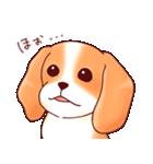 いぬだらけ。小型犬-その1-(個別スタンプ:2)