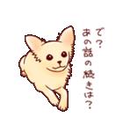 いぬだらけ。小型犬-その1-(個別スタンプ:14)