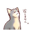 いぬだらけ。小型犬-その1-(個別スタンプ:15)