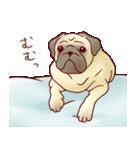 いぬだらけ。小型犬-その1-(個別スタンプ:19)