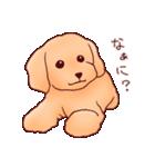 いぬだらけ。小型犬-その1-(個別スタンプ:21)