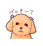いぬだらけ。小型犬-その1-(個別スタンプ:23)