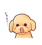いぬだらけ。小型犬-その1-(個別スタンプ:24)