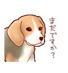 いぬだらけ。小型犬-その1-(個別スタンプ:27)