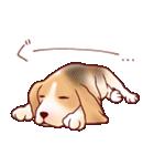 いぬだらけ。小型犬-その1-(個別スタンプ:28)