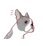 いぬだらけ。小型犬-その1-(個別スタンプ:29)