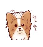 いぬだらけ。小型犬-その1-(個別スタンプ:33)