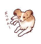 いぬだらけ。小型犬-その1-(個別スタンプ:34)