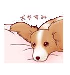 いぬだらけ。小型犬-その1-(個別スタンプ:36)