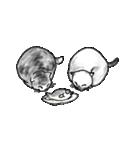 すきみゃさんスタンプ(個別スタンプ:09)