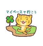 猫と四つ葉のクローバー(個別スタンプ:11)