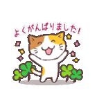 猫と四つ葉のクローバー(個別スタンプ:15)