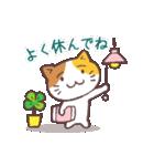 猫と四つ葉のクローバー(個別スタンプ:19)
