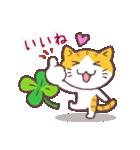 猫と四つ葉のクローバー(個別スタンプ:24)