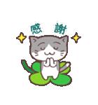 猫と四つ葉のクローバー(個別スタンプ:30)