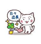 猫と四つ葉のクローバー(個別スタンプ:31)