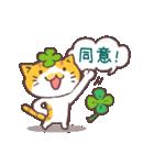 猫と四つ葉のクローバー(個別スタンプ:39)