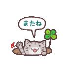 猫と四つ葉のクローバー(個別スタンプ:40)