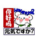 中国語(簡体字)と日本語と英語をしゃべる熊(個別スタンプ:3)
