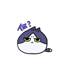 ぷにっとねこ ハチワレ君(個別スタンプ:01)
