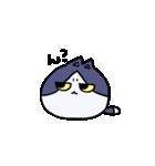 ぷにっとねこ ハチワレ君(個別スタンプ:05)