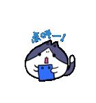 ぷにっとねこ ハチワレ君(個別スタンプ:39)